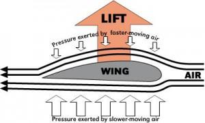 Flight Bernoulli