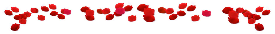 Valentine's Day Rose Petals - GameHouse