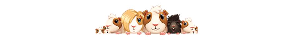 Heart's Medicine - Doctor's Oath - Guinea Pigs